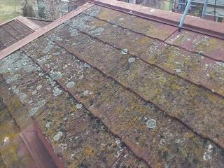 屋根塗装工事 栃木市O・S様邸コロニアル屋根
